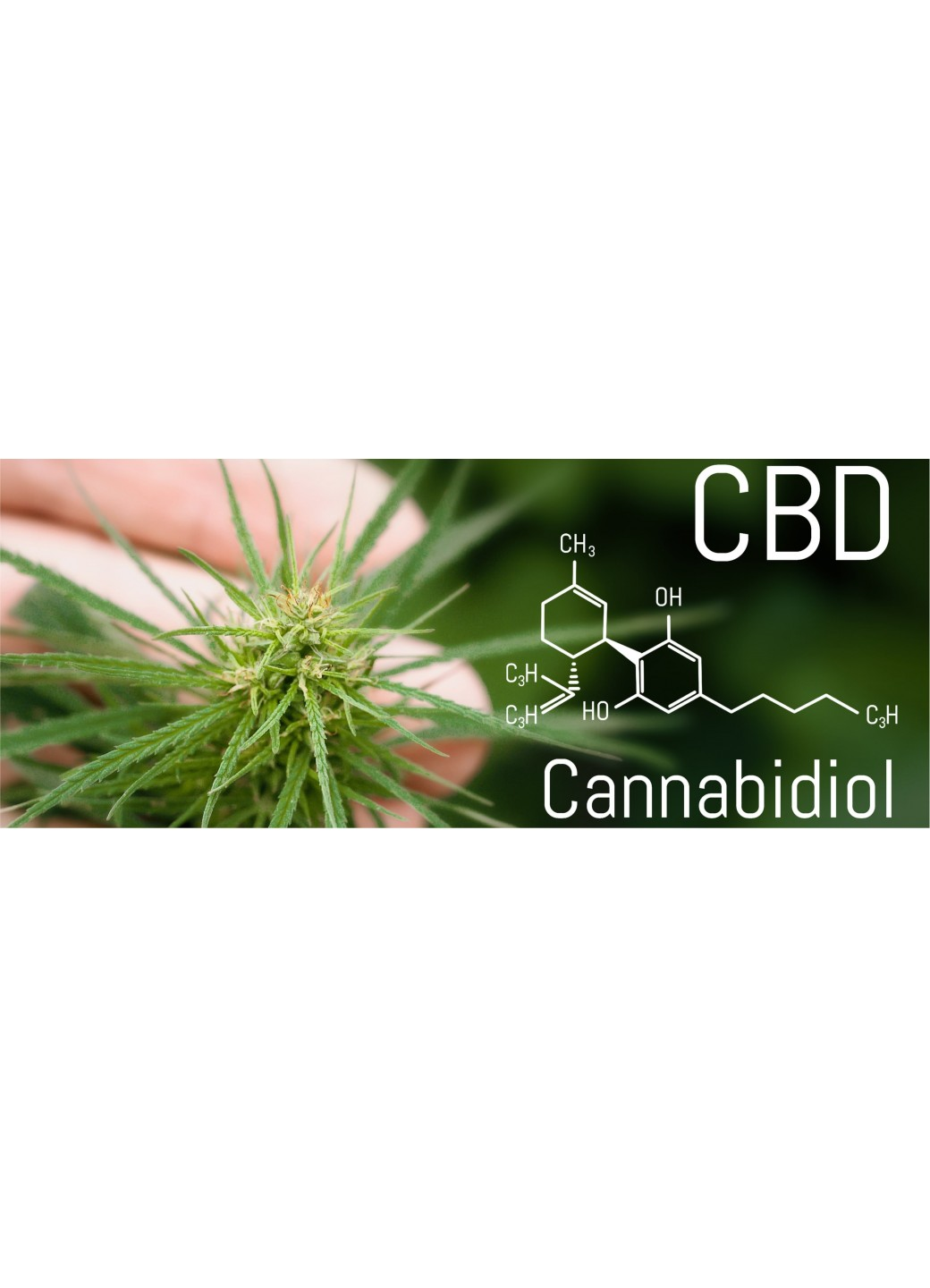High-quality CBD Oils from the Bullet CBD Company